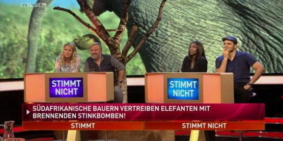 Cliparts.TV_Spieletechnik_Martin_Rütter_Die_grosse_Tiershow_2013_Copyright_RTL_288_004