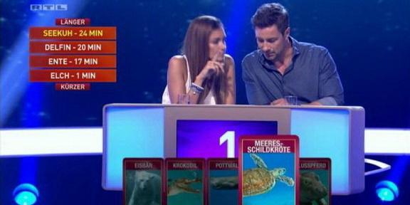 Cliparts.TV_Spieletechnik_Martin_Rütter_Die_grosse_Tiershow_2013_Copyright_RTL_288_012