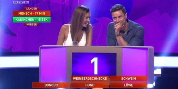 Cliparts.TV_Spieletechnik_Martin_Rütter_Die_grosse_Tiershow_2013_Copyright_RTL_288_013