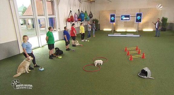 Cliparts.tv Interactive Media Solutions - Wiegetechnik für Mein Hund, die Kilos und ich - Copyright 2020 SAT.1 - 324 008